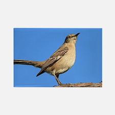 Mockingbird Profile Rectangle Magnet