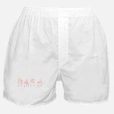 Sunset ASL FROG Boxer Shorts