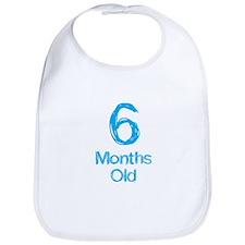 6 Months Old Baby Milestones Bib