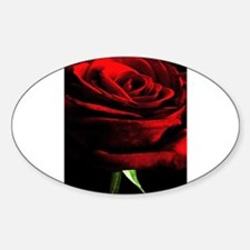 Red Rose of Love on Black Velvet Decal