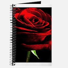 Red Rose of Love on Black Velvet Journal