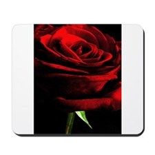 Red Rose of Love on Black Velvet Mousepad