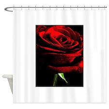 Red Rose of Love on Black Velvet Shower Curtain