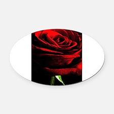 Red Rose of Love on Black Velvet Oval Car Magnet