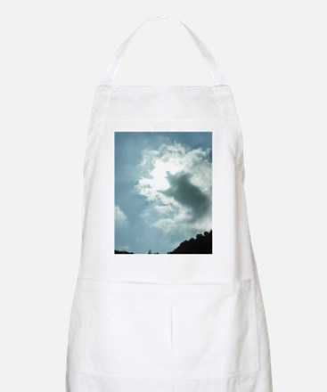 When Pigs Fly Apron