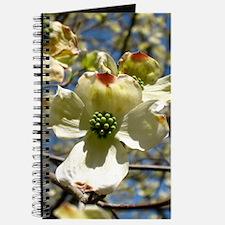 Dogwoods in Bloom Journal