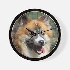 IcelandicSheepdog021 Wall Clock