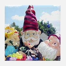 Unique Gnomes Tile Coaster