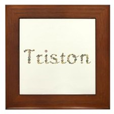 Triston Seashells Framed Tile