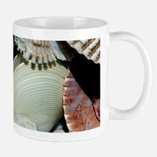 Colorful Seashells Mug