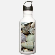 Colorful Seashells Water Bottle
