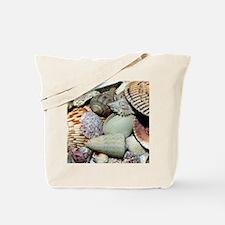 Colorful Seashells Tote Bag