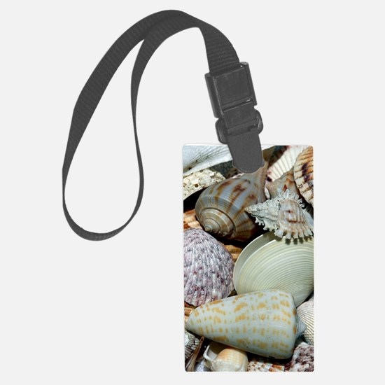 Colorful Seashells Luggage Tag