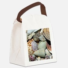 Colorful Seashells Canvas Lunch Bag