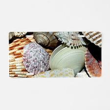 Colorful Seashells Aluminum License Plate