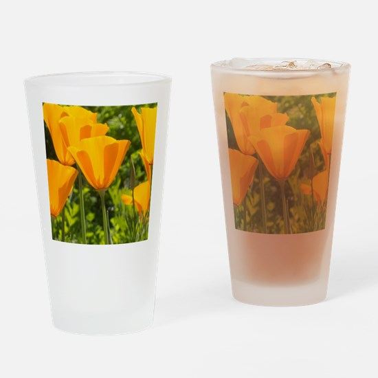 California Poppy Choir Drinking Glass