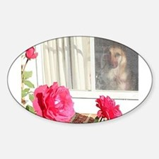 Exhibit Tara's Rosey Reflections Decal