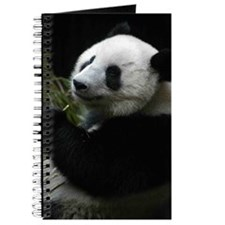 Panda (SD1) Journal