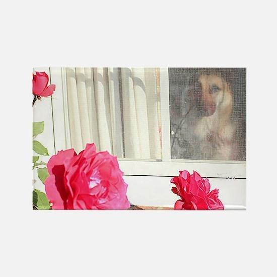 Exhibit Tara's Rosey Reflections Magnets