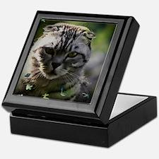 Rupert the cat Keepsake Box