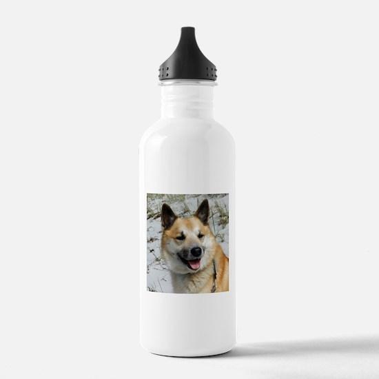 IcelandicSheepdog002 Water Bottle