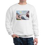 Creation / Fawn Pug Sweatshirt