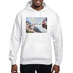 Creation / Fawn Pug Hooded Sweatshirt
