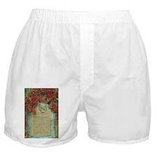Frederic Chopin memorial Boxer Shorts