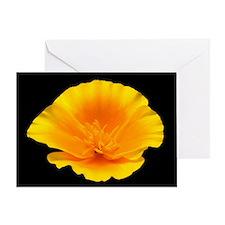California Poppy Portrait Greeting Card