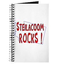 Steilacoom Rocks ! Journal