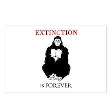 Gorilla Extinction Postcards (Package of 8)
