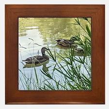 Ducks On a Reflection Pond Framed Tile
