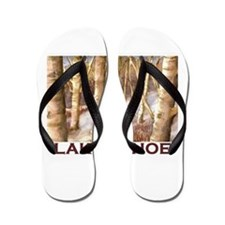 Aspen Winter Flip Flops