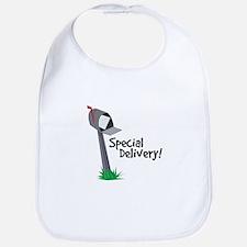 Special Delivery Bib