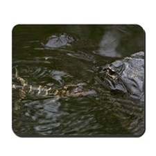 Baby Goes for a Swim Mousepad