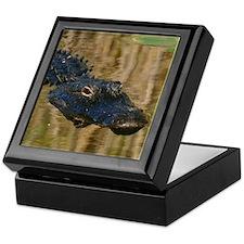 Alligator Swimming Keepsake Box