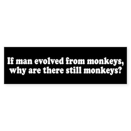 Man Evolved from Monkeys? Bumper Sticker
