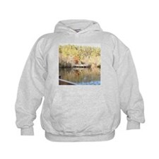 Reflections of Golden Winter Days Hoodie