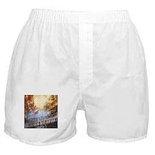 The Golden Path Below Boxer Shorts