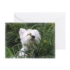 Nature Boy Westie Greeting Card