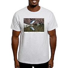 Black-crowned Night Heron Ash Grey T-Shirt