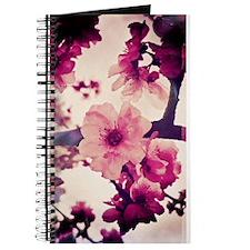 Rainy Blossoms-001 Journal