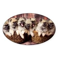 Puppies in baskets Decal