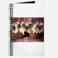 Puppies in baskets Journal