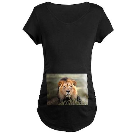 Lion in Africa photo Maternity Dark T-Shirt