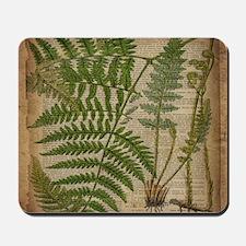 botanical fern leaves Mousepad