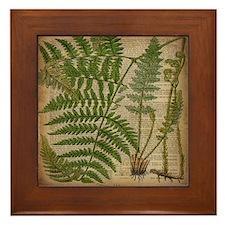 botanical fern leaves Framed Tile