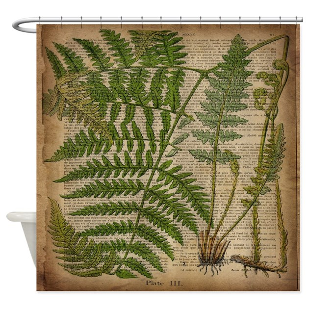 Curtains Ideas botanical shower curtain : botanical fern leaves Shower Curtain by listing-store-62325139