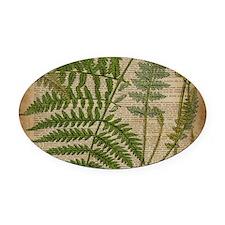 botanical fern leaves Oval Car Magnet