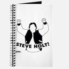 Steve Holt Journal